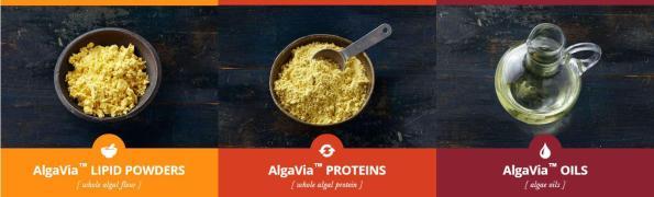 AlgaVia